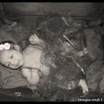 Suitcase Newborn Photoshoot | Photoshoots Pretoria