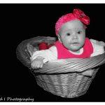 Baby in basket newborn Photoshoot | Photoshoots Pretoria