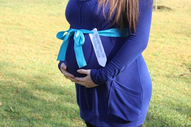 Gerber Maternity Photoshoot Ideas