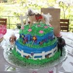 Horse Cake Birthday Photoshoot