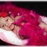 Pink Feathers Newborn Photoshoot | Photoshoots Pretoria
