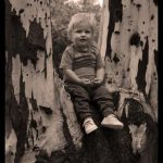 sitting in a tree photography | Photoshoots Pretoria