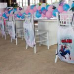 Decorations Birthday Party Photography